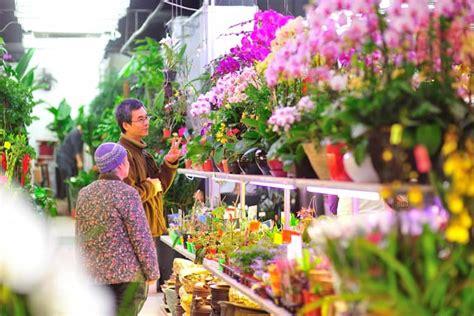 hong kong new year flower market 2015 hong kong s best markets experience hong kong