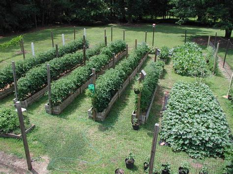 Ideal Vegetable Garden Layout All About Vegetable Garden Layout Front Yard Landscaping Ideas