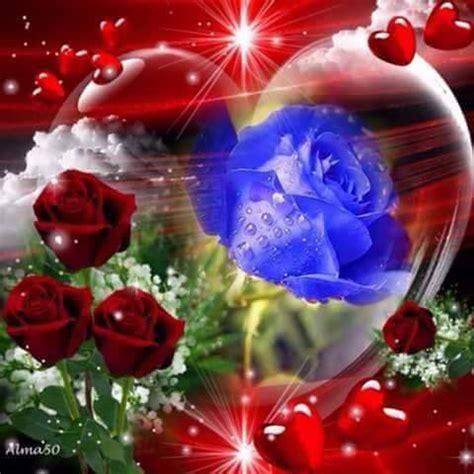 imagenes de corazones y rosas rojas corazones y rosas florm pinterest caras