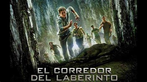 pel 237 cula the maze runner en latino y subtitulada hd 720p