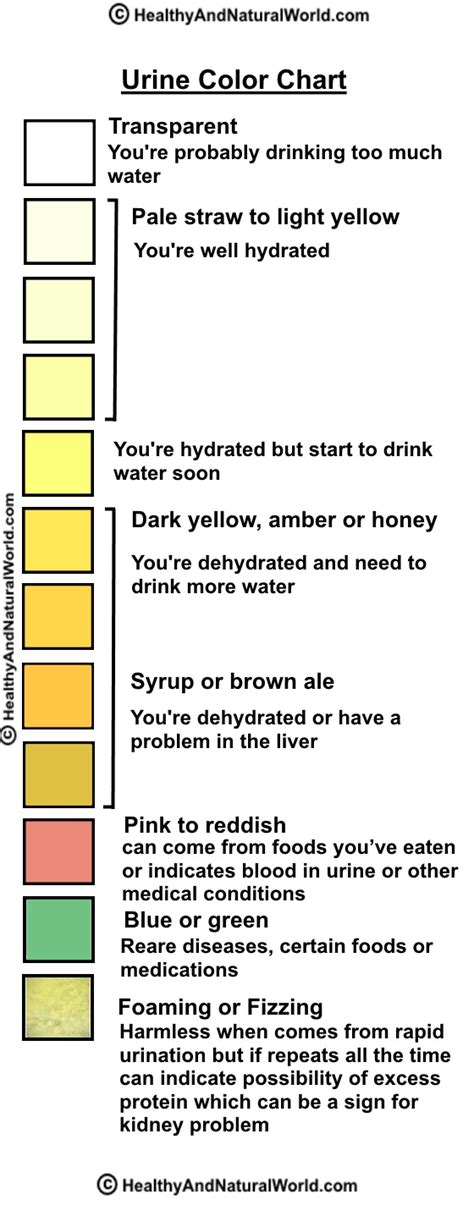 urine color chart what can your urine tell you about your health