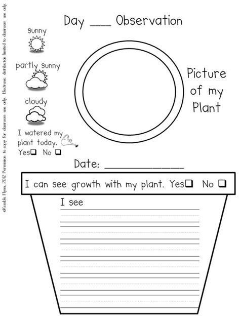 printable science observation journal preschool plant journals template plant journal