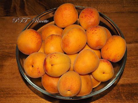 confettura di limoni fatta casa confettura di albicocche fatta in casa ptt ricette