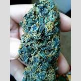 Biggie Smoking Weed | 384 x 512 jpeg 77kB