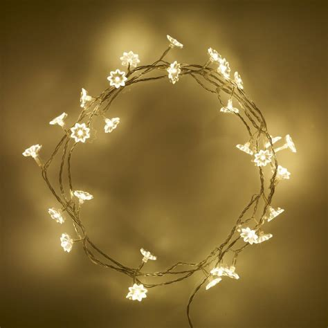 240v Low Voltage 30 Warm White Flower Petal Led Flowers Stringing Lights
