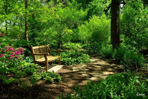 St Louis Botanical Garden Hours Bench Picture Of Missouri Botanical Garden Louis Tripadvisor