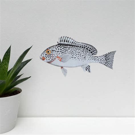 wall stickers fish monochrome fish fabric wall sticker by chameleon wall notonthehighstreet