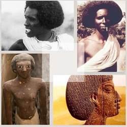 somali haircuts somali ancient egyptian afro hairstyle the somali