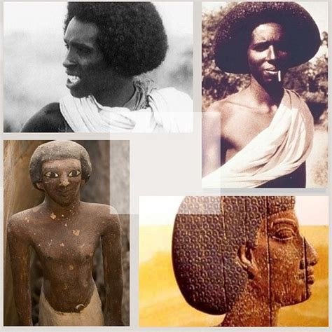 modern egyptian hairstyles somali ancient egyptian afro hairstyle the somali