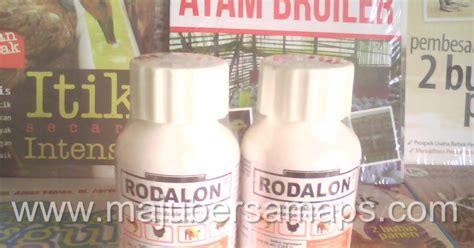 Obat Fermentasi Pakan Ternak Sapi cara ternak kelinci obat ternak kambing