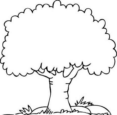 Coloring Pages Coloring Trees Tree Coloring Pages For Color Trees