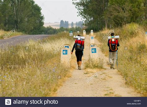 camino de santiago pilgrimage route camino de santiago pilgrims on the route the way of st