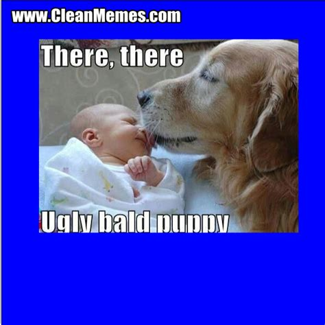 Ugly Dog Meme - ugly dog meme quotes