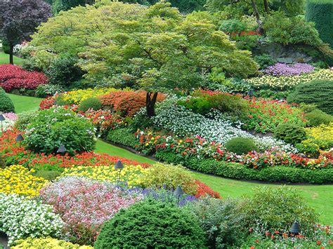 butchart gardens vancouve quot sunken garden butchart gardens victoria vancouver