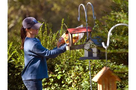 backyard bird watcher backyard bird watching know how central tractor supply co
