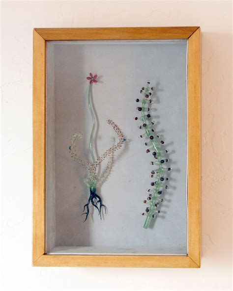 Handmade Shadow Boxes - handmade quot drosera quot shadow box by salusa glassworks inc