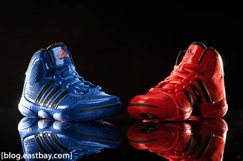 eastbay adidas basketball shoes adidas adipure all colorways eastbay