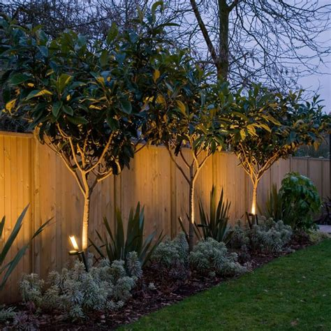 Trees For Backyard Landscaping by Best 25 Fence Landscaping Ideas On Privacy
