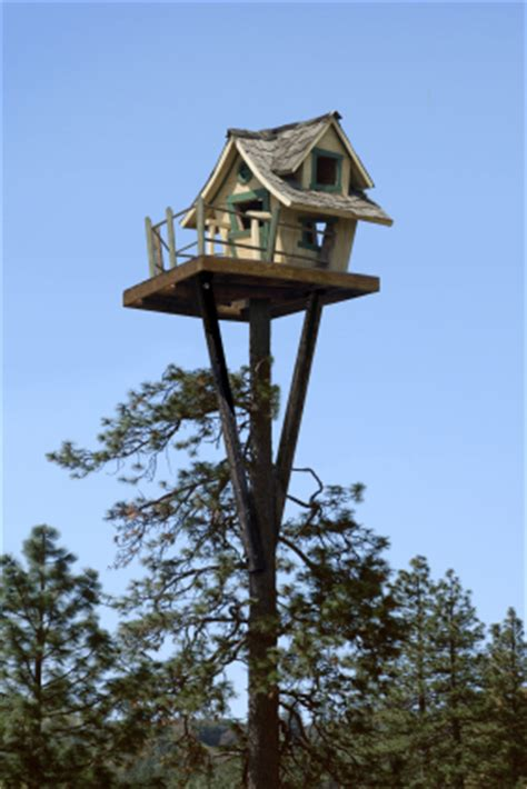 tiny tree house way up high tiny tree house
