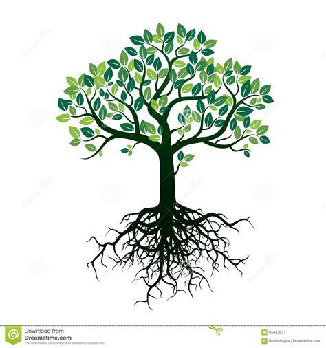 albero clipart albero e radici di colore illustrazione di vettore