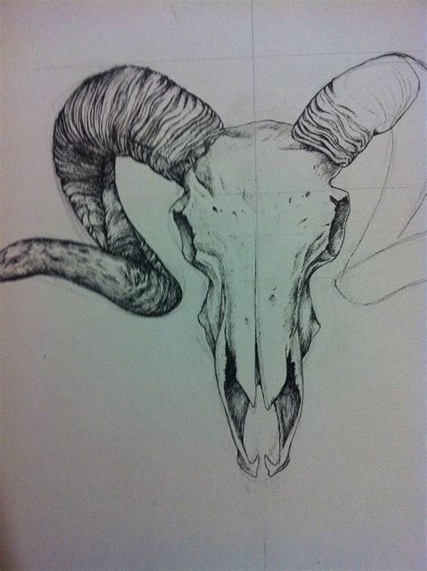 tattoo practice pen pen drawing of a ram skull my arts pinterest ram