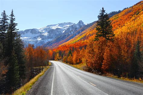 best scenic road trips in usa here s the most efficient route for a road trip through