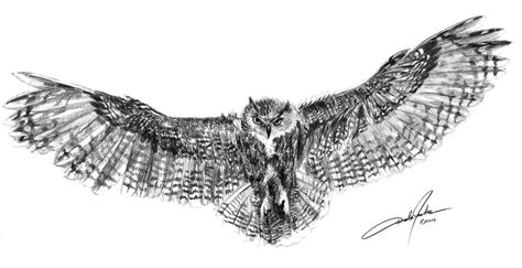 you have to see eagle owl in flight by stratoart