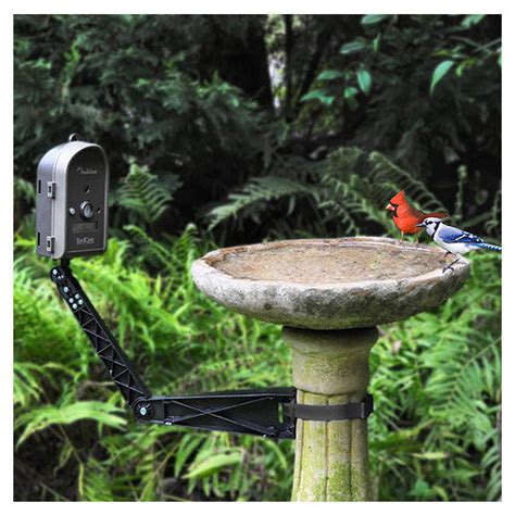 Frontgate Bird Feeders Bird Mounting Arm Frontgate Traditional Bird