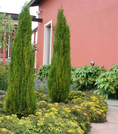Allee De Jardin Design