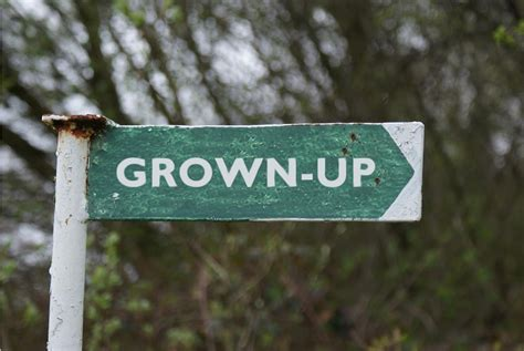 Grown Up decisions expectations and responsibilities as a