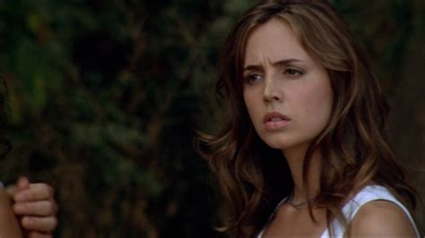 wrong turnings how the left got lost books eliza dushku 187 fanlisting