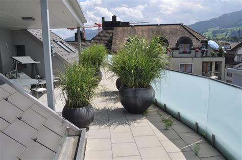 terrasse pflanzen winterharte pflanzen terrasse heimdesign