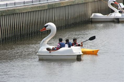 swan boats penn s landing delco daily top ten top 10 boats that float