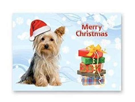 yorkie cards card yorkie and many more breeds