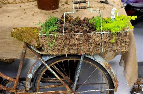 creative containers for gardening creative container gardening sand and sisal