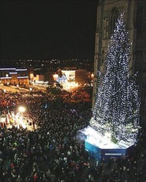 bbc norwich to get uk s tallest christmas tree at the