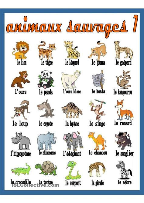 Animaux En E by 160 Best Images About Fle Animaux On