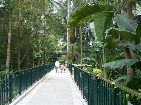 Hk Zoological And Botanical Garden Cimg2228 香港動植物公園 Hong Kong Zoological And Botanical Gardens Hkzbg