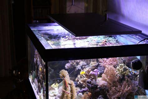 aquarium led beleuchtung erfahrung marsaqua 165w dimmable led aquarium beleuchtung f 252 r fisch