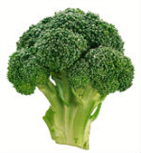 protein in broccoli protein in broccoli easy ways to lose weight