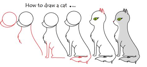how to draw cat how to draw a cat dr