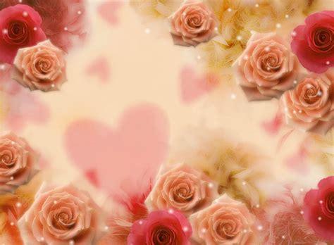 Imagenes De Rosas Lindas Preciosas De Fondo De Pantalla Imagenes De | imagenes de rosas lindas preciosas de fondo de pantalla