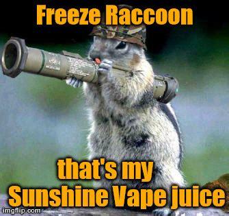 Meme Generator Raccoon - bazooka squirrel meme imgflip