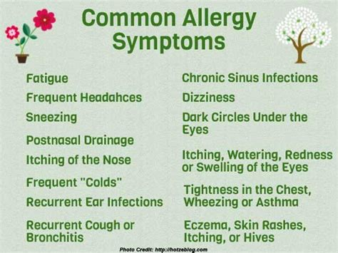 allergy symptoms allergy awareness week 2017 25th april to 1st may