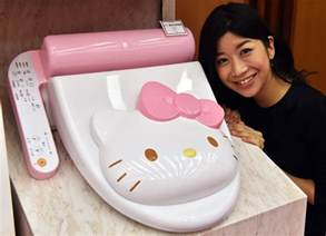 Bidet Cover Chinese Media Pooh Pooh Shoppers Embrace Of Japanese