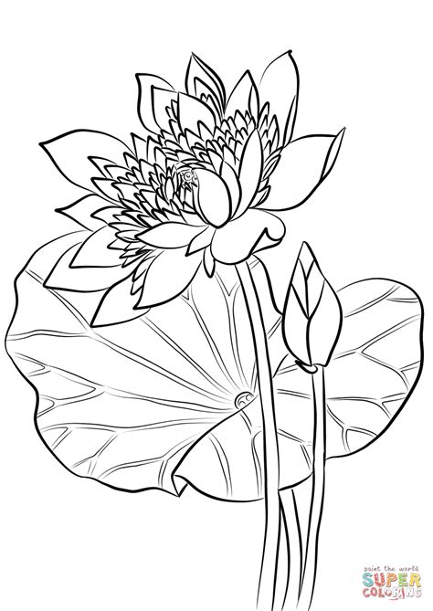 interfaith inspiration coloring book inspired coloring volume 1 books 86 sacred flowers coloring book this is a page from