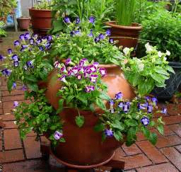 flower suggestions for strawberry pots