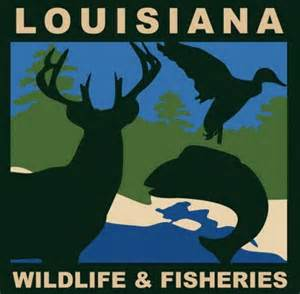 Avoyelles Parish Arrest Records Alleged Deer Violations Land And In Avoyelles Parish