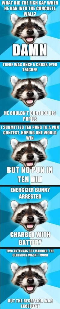 Bad Pun Raccoon Meme - bad pun coon meme memes