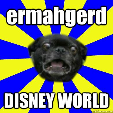 Meme World - ermahgerd disney world ermahgerd pug quickmeme